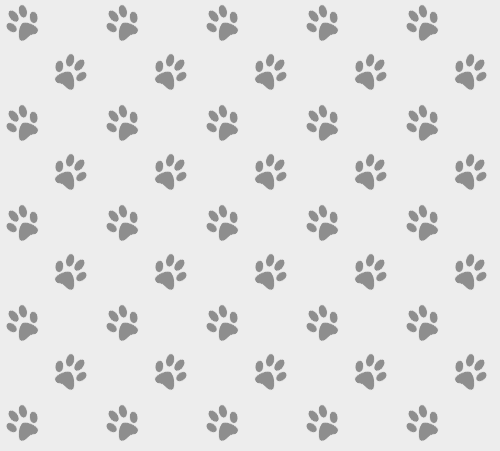 Grey Paw Print Seamless Pattern Circle Of Friends Animal Society Inc Free for commercial use no attribution required high quality images. grey paw print seamless pattern