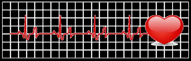 heartmonitor650